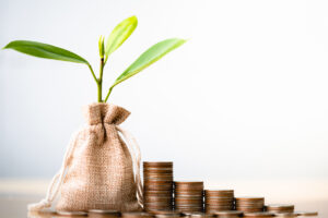 Annuities image with a growing plant and stack of increasing money